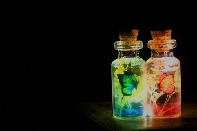 小瓶に入った蝶々
